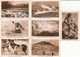 COLECCION COMPLETA DE 21 CROMOS DE ANIAKCHAK EN ALASKA  (SIN PUBLICIDAD) MUY RARA - Cromos