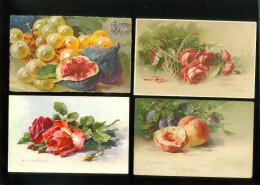 Beau lot de 30 cartes postales d' un illustrateur Catharina Klein  Lot van 30 postkaarten van Catharina Klein   30 scans