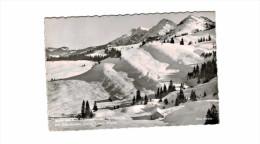 Allemagne - Motiv Aus Dem Skiparadies Hochhädrich Bei Oberstaufen Steibis In Bayern - Oberstaufen