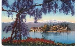Italie Lago Maggiore  Isola Bella 1931 + Scanner Verso  Piemont Piemonte - Italia