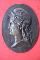 Médaillon Bronze Marianne Début XX ème .H:18 Cms L: 13,5 Cms Poids : 296 Grs - Bronzes