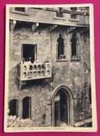 VERONA 1950 CAMPIONATO ITALIANO DI NUOTO E TUFFI - CARTOLINA VIAGGIATA - Natation