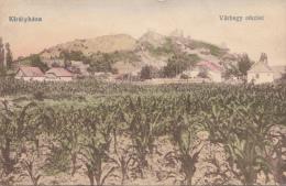 B82664 Kiralyhaza Corn Plantation Agriculture Korolevo Ukraine  Front/back Scan - Ukraine