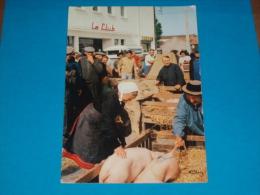 85) Saint-gervais - N° 38.21 - Marché Aux Cochons - Grand Format  - Année 1971 - EDIT- Cim - France