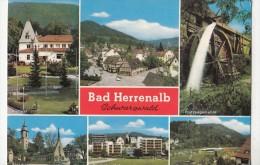 BF29141 Bad Herrenalb Schwarzwald Germany Front/back Image - Bad Herrenalb