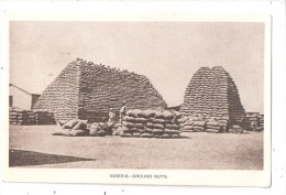 NIGERIA PROBABLY KANO GROUNDNUT PYRAMIDS POSTCARD RP Nigéria - Carte-photo - Groundnut Industry -  Ground Nuts - Nigeria
