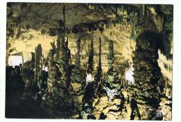 Lot  2 Cartes  Interieur  Grotte  Aven D'orgnac Avec  3 Anciens  Tickets - Photographie