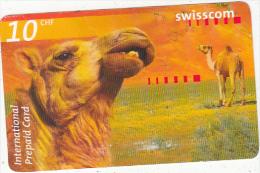 SWITZERLAND - Camel, Swisscom prepaid card CHF 10, exp.date 10/04, used