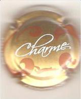 CAPSULE CHAMPAGNE BLAISE LOURDEZ DAMERY (blanc Et Marron Fond Or) CHARME - Autres