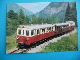 Train Du Martigny - Châtelard Aux Environs Des Marécottes En 1971 - Treinen