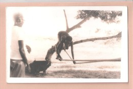 RP NIGERIA  ETHNIC AFRICA Rope Climbing PLAIN BACK POSTCARD NIGERIA WRITTEN IN PENCIL TO THE BACK  1 Of 4 - Nigeria