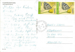 Spain 2011 Las Palmas Melanargia Butterfly Insect Viewcard To Cameroon - Mariposas