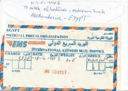 Egypt 1999 El Mansura EMS Express Label Cover - Brieven En Documenten