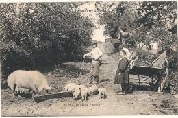 Nos Campagnes - La Petite Famille - Limousin    Timbrée TTB Cochons élevage - Elevage