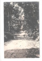 RP  SAID TO BE GOLD COAST Ghana A ROAD DIRT TRACK AND NATIVE TREES EITHER SIDE UNUSED  CARD 4 OF 7 - Ghana - Gold Coast