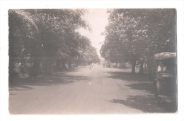 RP  SAID TO BE GOLD COAST Ghana A ROAD WITH MOTOR CAR TREES EITHER SIDE UNUSED  CARD 6 OF 7 - Ghana - Gold Coast