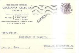 80946)cartolina Postale  Giardino Allegra Affrnc.lire15 Da Catania A Castelferrato4-11-58 - 6. 1946-.. Republic