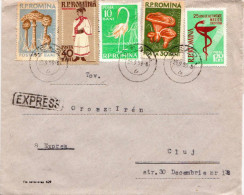 Postal History Cover: Romania - Covers & Documents