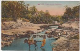 Joli Petit Lot Varié Thème Principal : Afrique.11 Cpa - Postcards