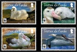 Tristan Da Cunha 2013 - Faune En Danger, Oiseaux,  Albatros, WWF - 4 Val Neufs - MNH - Tristan Da Cunha