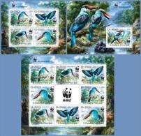 st14320abc S.Tome Principe 2014 WWF Bird Kingfisher 3 s/s