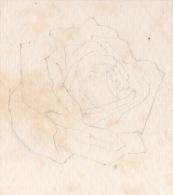 2 CARTES POSTALES VIERGES . UNE ESQUISSE DE DESSIN (ROSE) AU CRAYON À PAPIER - Réf. N°7298 - - Cartoline