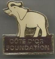 Pins Elephant  Cote D Or Fondation - Animaux