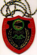 Londerzeel 1971 - Karneval Komitee - Prins Willy I - Plaquette In Goudkleurig Metaal - Carnaval