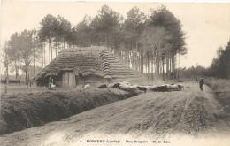 Landes : Morcent, Une Bergerie, Precurseur - Morcenx