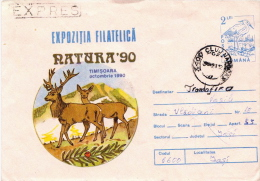 Postal History Cover: Romania Postal Stationery - Storks & Long-legged Wading Birds