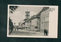 AK - Neustrelitz - Glambecker Strasse ( Animée Verlag Hans Andres) - Neustrelitz