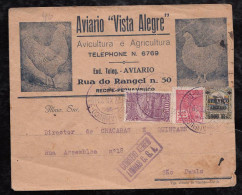 Brazil Brasil 1929 Advertising CGA Airmail Cover RECIFE To SAO PAULO Chicken - Brésil