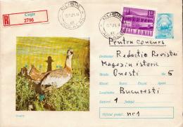 Postal History Cover: Romania Postal Stationery - Vögel