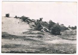 B5166   OPGLABEEK : Jeugdparadijs - Opglabbeek