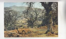 BF30663 Brecon Landscape Uk  Front/back Image - Breconshire