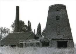 BETEKOM Bij Begijnendijk - Molen/moulin - Historische Opname Van De Nieuwe Molen In 1984 Voor De Renovatie. Zeer Fraai. - Begijnendijk