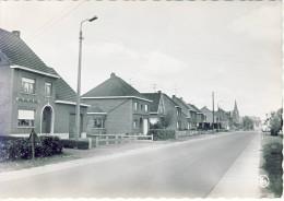 Veerle Diestbaan - Laakdal