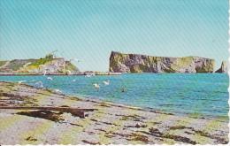 PC Percé (Québec) - Le Rocher Percé Et Les Oiseaux - 1967 (9037) - Percé