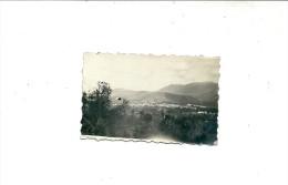 GIANO VENUSTO  CM.4 X6   FOTO - Caserta