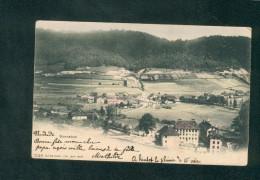 Suisse BE  - Sonceboz ( Vue Generale Colorisée Ed. Burgy) - BE Berne