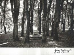 Grand Menu/ Sur Photographie/ Centre D'expéeimentation Agricole De Jonville / 1969   MENU71 - Menus