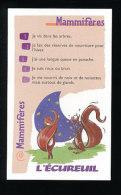 Humour Ecureuil / Squirrel Animal  / IM 126/36 - Old Paper
