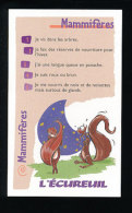 Humour Ecureuil / Squirrel Animal  / IM 126/36 - Vieux Papiers