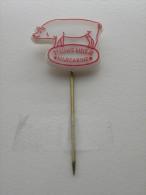 Pin Zeeuws Meisje Margarine (GA00072) - Animaux