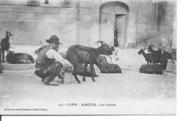 CORSE -  Chevrier - Berger -  La Livraison De Lait De Chèvres à Domicile - - Pas Le Moindre Défaut - Ajaccio