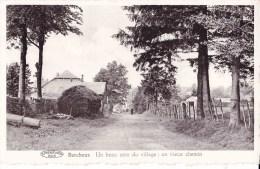 BERCHEUX - Un Beau Coin Du Village : Un Vieux Chemin - Vaux-sur-Sûre
