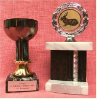 2 X Pokal Kaninchen-Zucht-Verein Und Handball SV Bonames - Ca. 21 Cm Und 16,5 Cm Länge  -  Von 1981 / 1992 - Vereinswesen