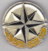 Romania army  NATO pin badge