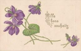 VIOLETTES/GAUFREE/ Réf:C2365 - Fleurs, Plantes & Arbres