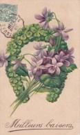 VIOLETTES/TREFLE/GAUFREE/ Réf:C2366 - Fleurs, Plantes & Arbres